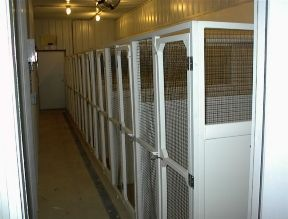 The inside of our dog boarding facility